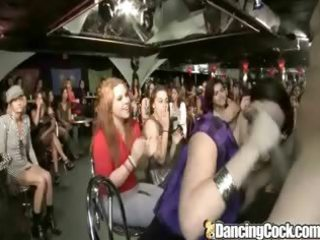 dancingcock latino milfs need cum.p1